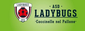 Ladybugs head