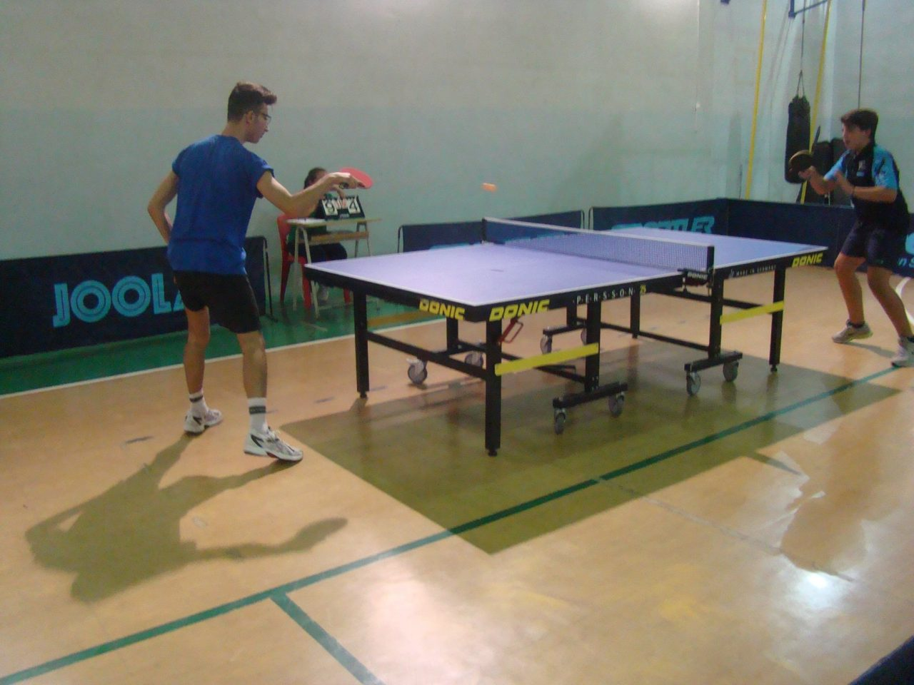 tennistavolo, ping pong