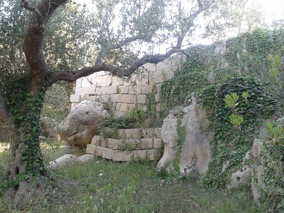 Oggi a cursi le visite ai giardini di pietra leccezionale salento