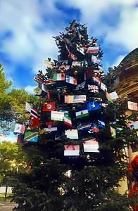 albero della pace Lecce