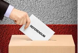 Referendum, il servizio trasporto per diversamente abili e anziani