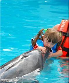 delfino-pet-therapy