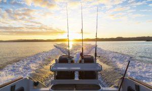 pesca-daltura